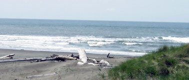Beach and Pacific Ocean in Ocean Shores, WA