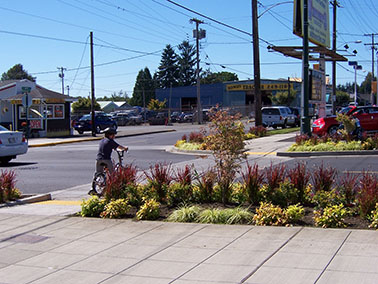 crosswalk and landscape in Downtown Montesano